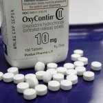 Attorneys Make their Case for Putnam Opioid Lawsuit
